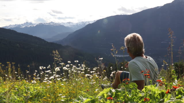male hiker relaxes in alpine meadow, looks off to distant view - meadow stock videos & royalty-free footage
