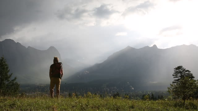 Male hiker traverses mountain meadow, pauses to admire view