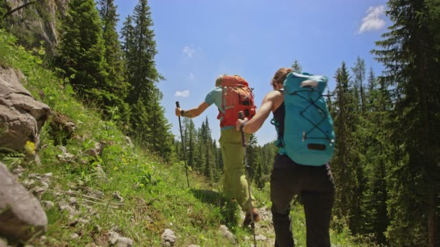 male hiker walking uphill with his two friends on a sunny day - uphill stock videos & royalty-free footage