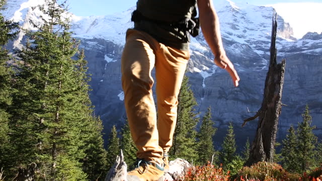 male hiker walks along log through mountain meadow - only mature men stock videos & royalty-free footage
