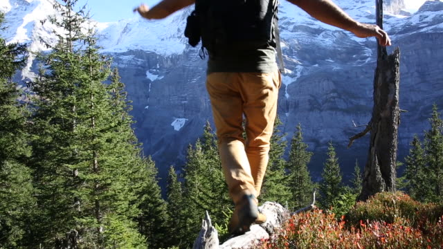 male hiker walks along log through mountain meadow - erholung stock-videos und b-roll-filmmaterial
