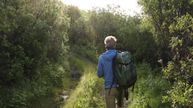 male hiker walks along rural track at sunrise, consults map - one mature man only stock-videos und b-roll-filmmaterial