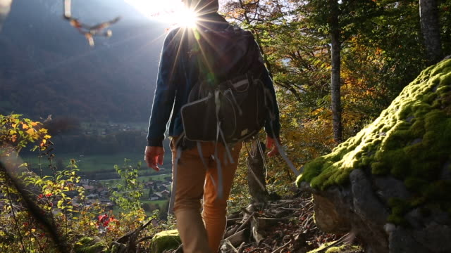 male hiker walks through autumn forest above mountian village - lockdown viewpoint stock videos & royalty-free footage