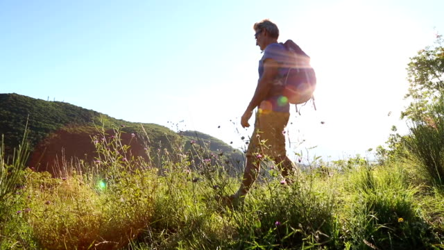 Male hiker walks through hilltop field