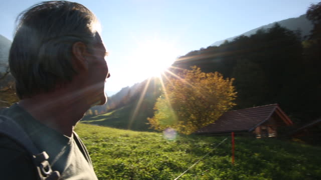 male hiker walks through mountain meadow, sunrise - one mature man only stock-videos und b-roll-filmmaterial