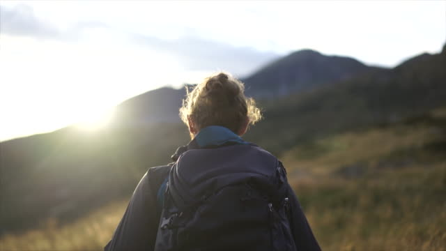 男性ハイカーは、山の頂上の下にバックパックと日没時に背の高い草を歩きます - 方向点の映像素材/bロール
