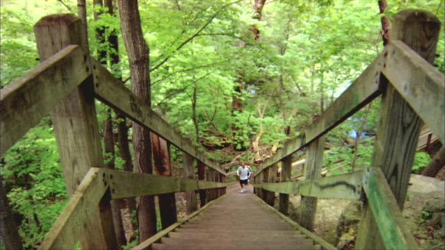 ws, ha, shaky, male jogger ascending wooden steps in forest, rockford, illinois, usa - wood material stock videos & royalty-free footage