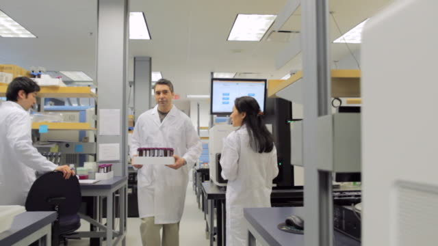 ms pov male lab technician carrying samples through lab / vancouver, bc, canada - medical research stock videos & royalty-free footage