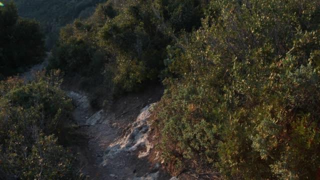 manlig mountainbike-cyklist har otäck wipeout på stenig stig - falla av bildbanksvideor och videomaterial från bakom kulisserna