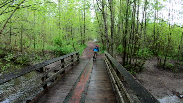 male mountain biker rides along forested bridge and path - country road stock videos & royalty-free footage