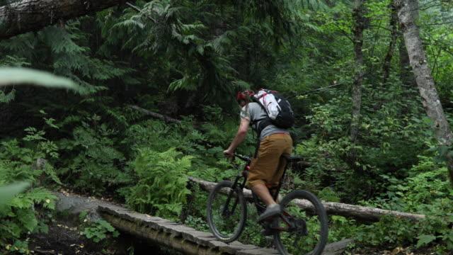 männliche mountainbiker fahrradtouren entlang waldweg, über brücke - nur junge männer stock-videos und b-roll-filmmaterial
