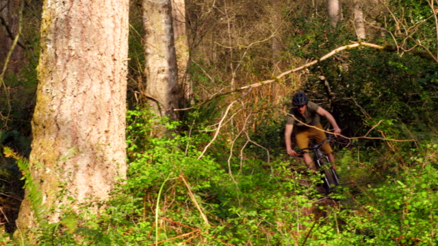 vidéos et rushes de ms male mountain biker riding bike down trail in forest - faire du vélo tout terrain