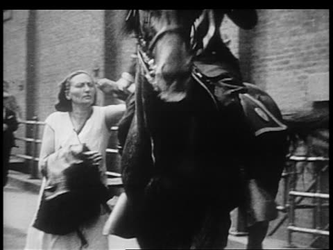 b/w 1932 male police officer on horse grabbing female protestor by arm / brooklyn ny - herbivorous stock videos & royalty-free footage