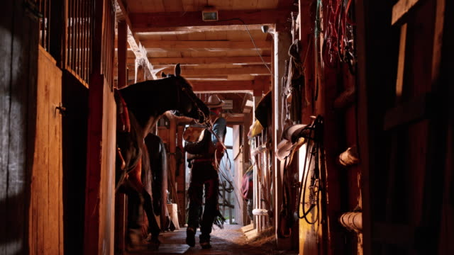 ds male rancher leading his horse out of stable - barn stock videos & royalty-free footage