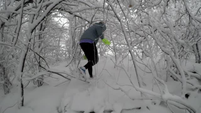 männliche läufer enten und schlängelt sich durch verschneite äste - nur junge männer stock-videos und b-roll-filmmaterial