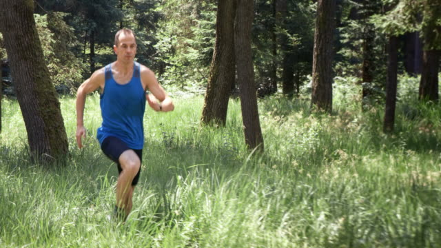 SLO MO DS Male runner running in the forest