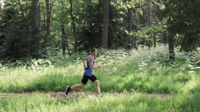 SLO MO DS uomo corridore corre su sentiero nella foresta al sole