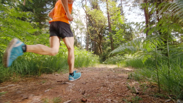 SLO MO DS Male runner running on a sunny forest path