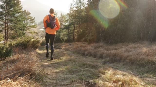 Male runner running on the beautiful mountain trail in sunshine