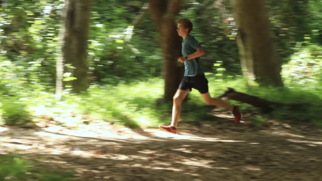 vídeos y material grabado en eventos de stock de ms pan ts male runner running through forest / los angeles, california, united states - un solo adolescente