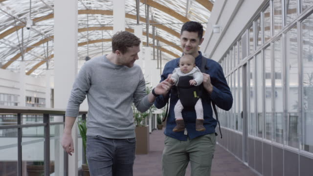 male same-sex couple walking indoors with their infant - baby carrier stock videos & royalty-free footage