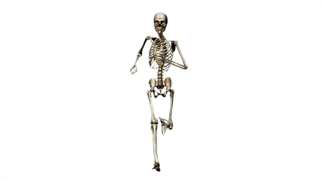 """""""male skeleton, running"""" - human skeleton stock videos & royalty-free footage"""