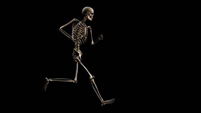 'Male skeleton, running'