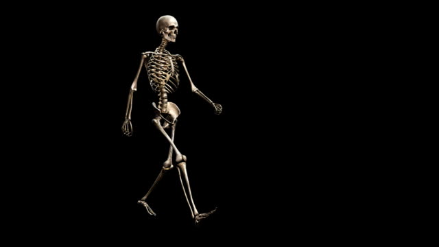 """male skeleton, walking"" - biomedical illustration stock videos & royalty-free footage"