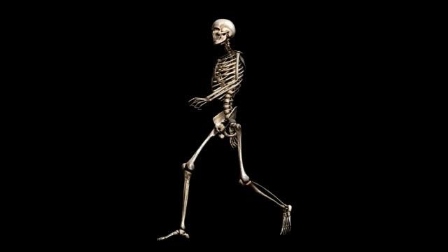 """male skeleton, walking"" - biomedical illustration stock videos & royalty-free footage"