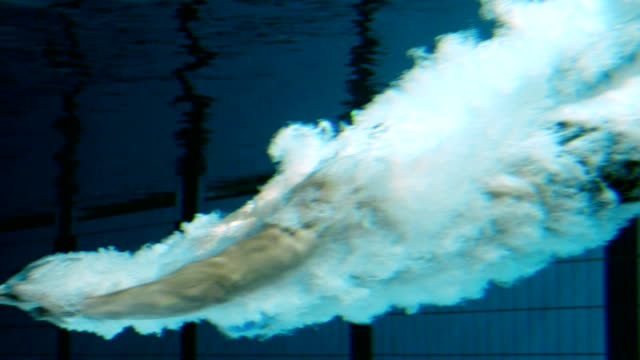 male swimmer jumping into pool - competitive sport stock videos & royalty-free footage