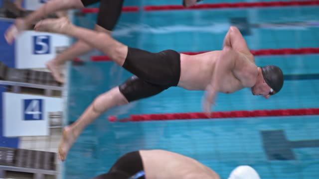 vídeos de stock e filmes b-roll de slo mo male swimmers diving off starting blocks in competition - competition