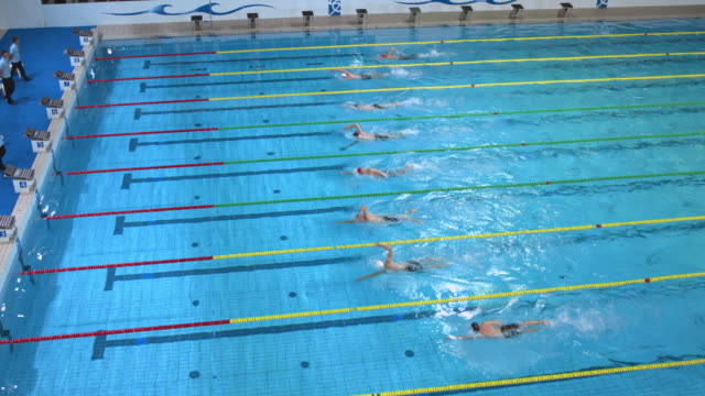 Male swimmers racing to the finish in freestyle competition