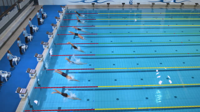 Male swimmers' start in a breaststroke style competition
