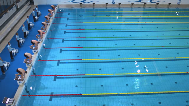 Male swimmers starting off the blocks in freestyle competition