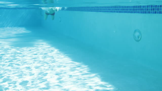 ls wa male swimming breaststroke in pool, underwater shot - badeshorts stock-videos und b-roll-filmmaterial