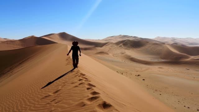 vídeos de stock e filmes b-roll de male tourists walking down a dune spine in namibia 4k video - human spine