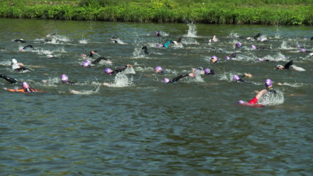pan male triathlete swimmers at race in a canal - triathlete stock videos and b-roll footage
