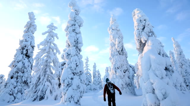stockvideo's en b-roll-footage met male walker carrying snow shoes riisitunturi np tykky beauty in nature, lapland finland - peter snow