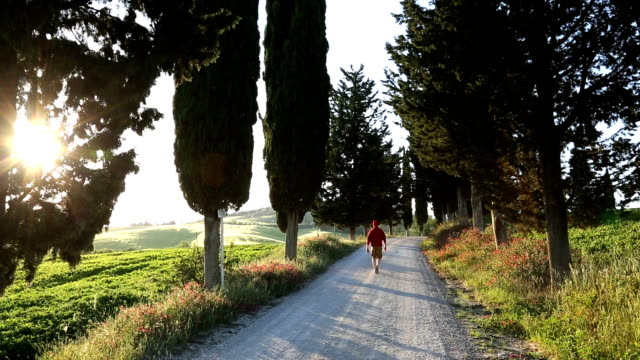 male walker dirt road italian countryside cypress trees tuscany  - only mature men stock videos & royalty-free footage
