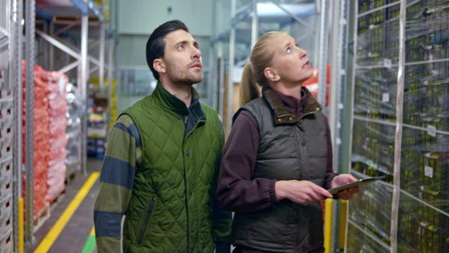 male warehouse employee talking to the female quality inspector as they walk in the aisle checking the fresh produce - distribution warehouse stock videos & royalty-free footage