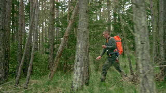 コンパスを使って森の中を歩くts男性荒野生存の専門家 - 全身点の映像素材/bロール