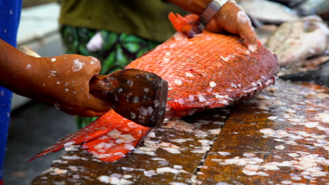Males preparing fish for market Nuku Hiva Marquesas