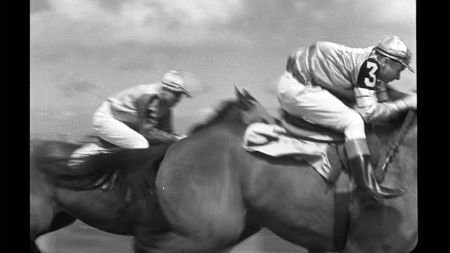 malicious running in horse race at tanforan racetrack. malicious wins, setting track record. - 競走馬点の映像素材/bロール