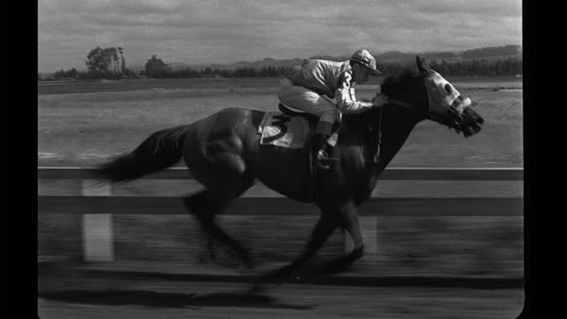 malicious running in horse race at tanforan racetrack. - hooved animal stock videos & royalty-free footage