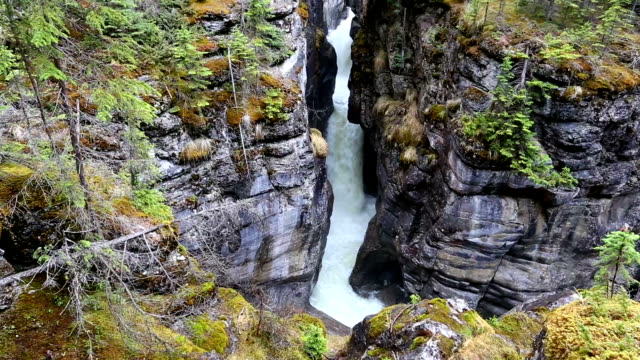 maligne canyon jasper national park - maligne river stock videos & royalty-free footage