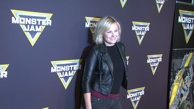 Malin Akerman at Monster Jam Celebrity Night at Angel Stadium of Anaheim on January 16 2016 in Anaheim California