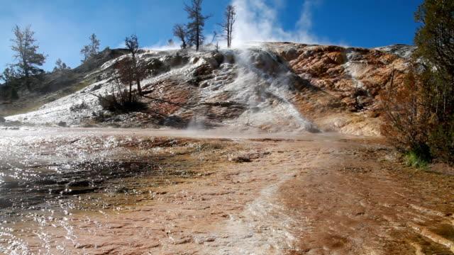mammoth hot spring terrassen im yellowstone national park - schwefelquellen stock-videos und b-roll-filmmaterial