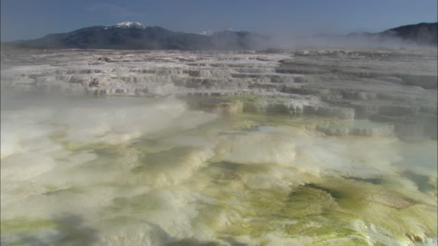 vídeos de stock, filmes e b-roll de mammoth springs and steam, snow capped mountains in background, yellowstone national park available in hd. - piscina térmica