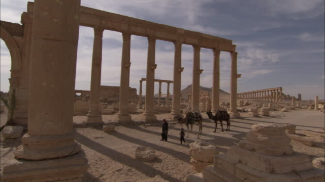 A man and a boy lead two camels along the grand colonnade in the ancient city of Palmyra. Available in HD