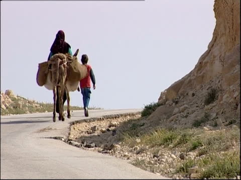 A man and a child lead a donkey along a road in the Wadi Qelt, Israel.